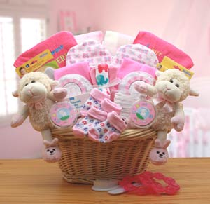 Double Delight Twins New Baby Gift Basket - Pink