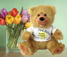 Noah The Feel Better Bear