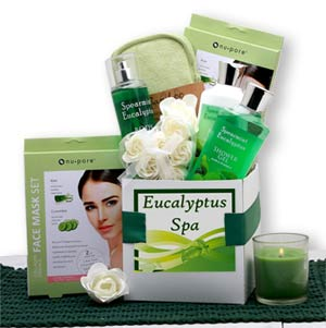 Eucalyptus Spa Care Package